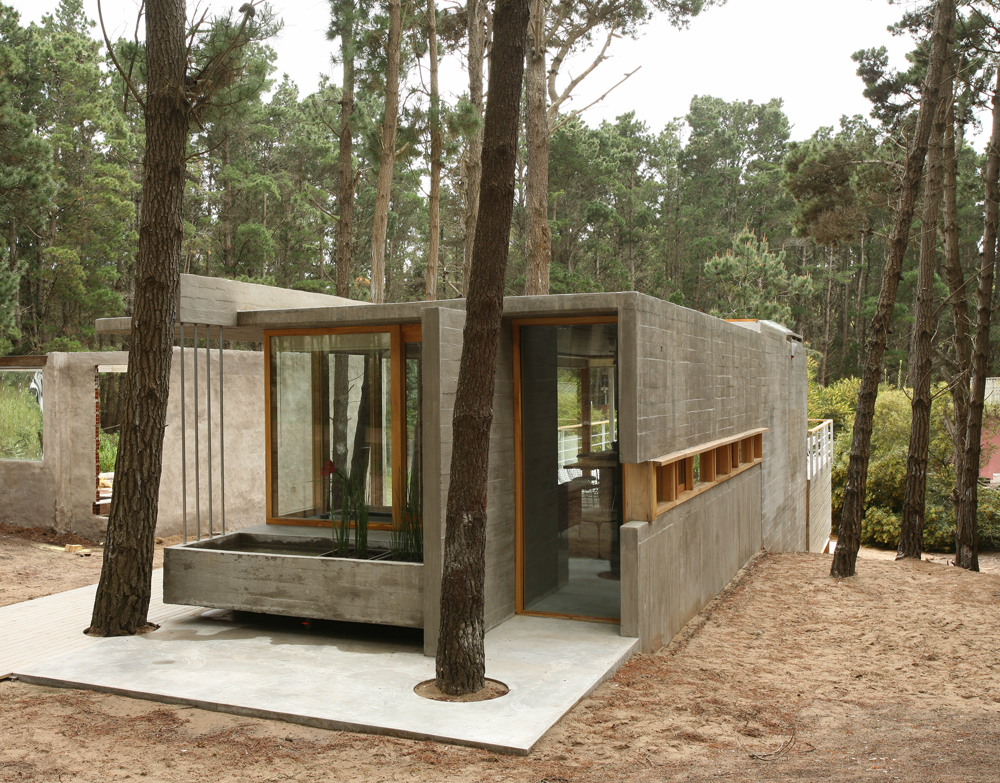 The house among trees shelby white the blog of artist - Casitas de campo ...