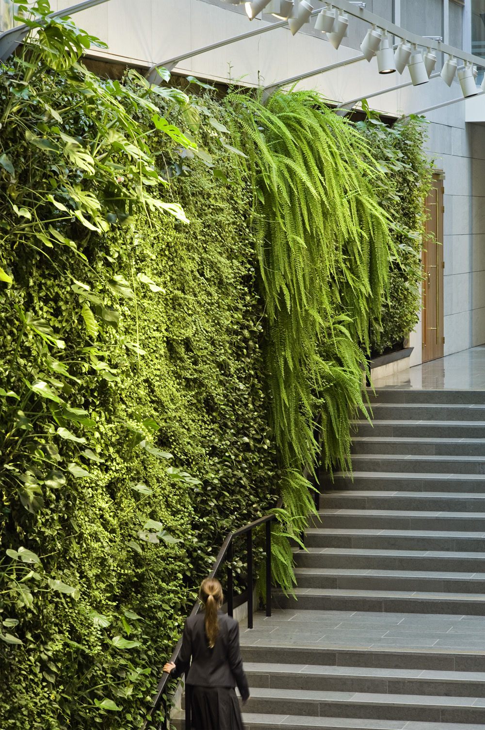 Plant wall paradise shelby white the blog of artist for Living plant walls