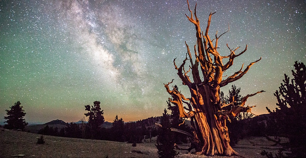 best astronomy photos of the year - photo #39